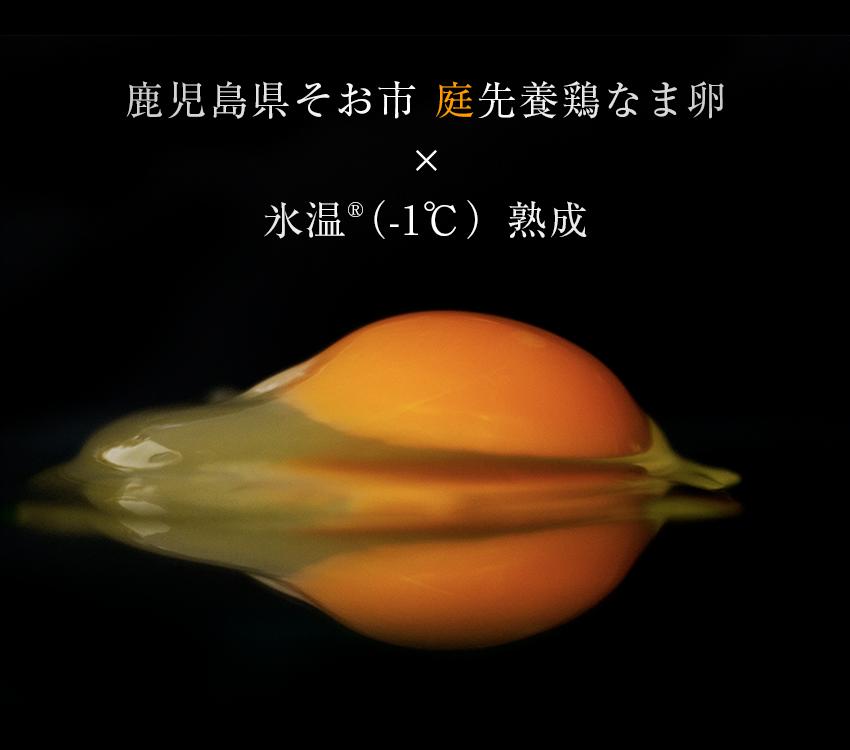 鹿児島県そお市庭先養鶏×氷温熟成なま卵